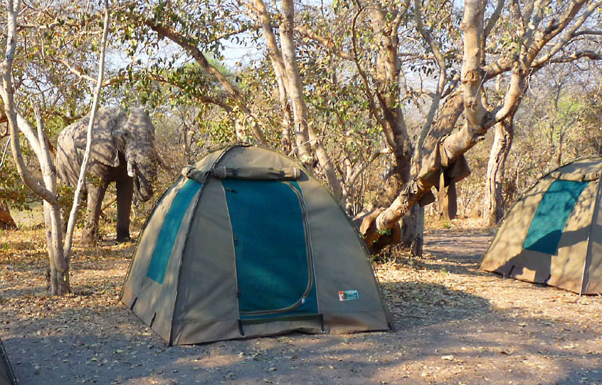 safari camping au Botswana, dates 2016