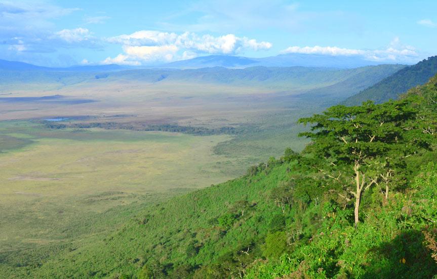 Safari en Tanzanie : le Ngorongoro