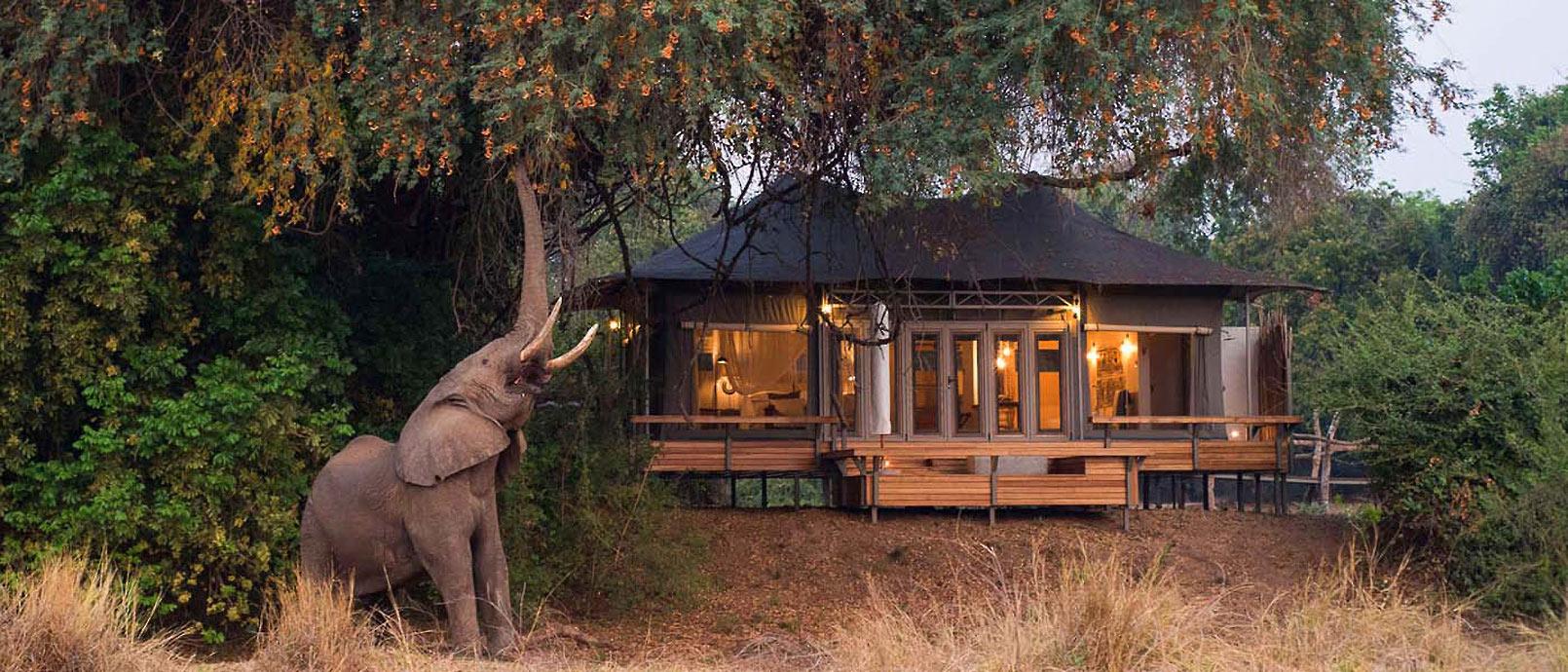 Le Chikwenya Camp Safari dans le parc de Mana Pools, au Zimbabwe