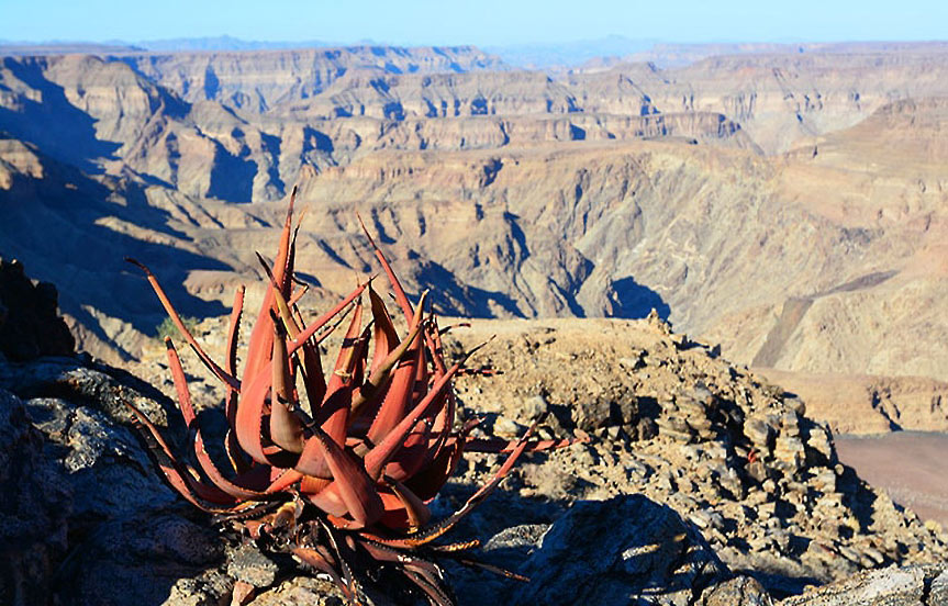 Circuit en Namibie : le Fish River Canyon