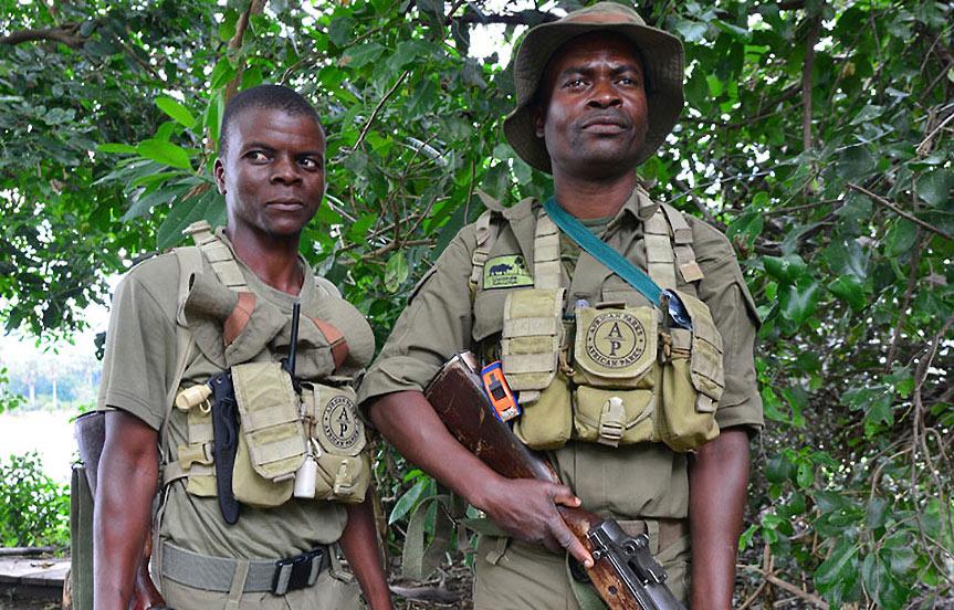 Les anges gardiens des parcs africains