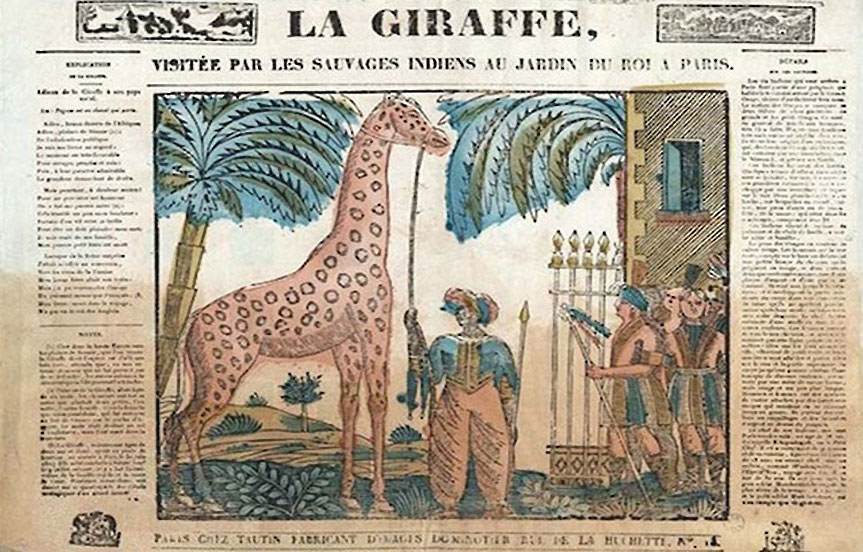 L'histoire de la girafe Zarafa